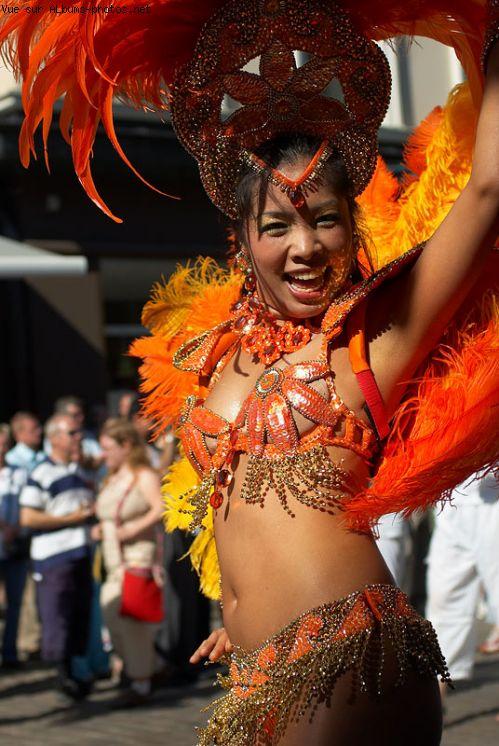 carnaval de rio www.album-photo.net